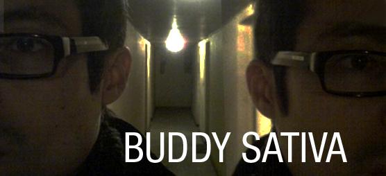 Buddy Sativa