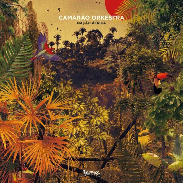 Camarão Orkestra – Nação África (LP)